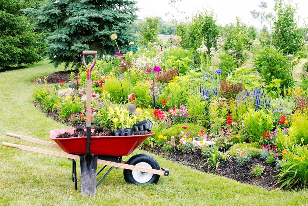 Learn The Following Tactics for Improving Your Landscaping Abilities